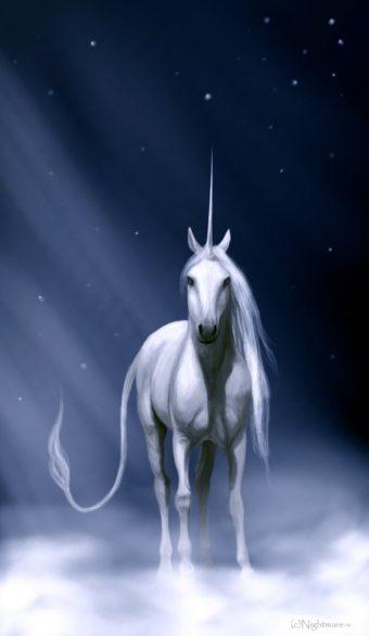 E parlando di unicorni…
